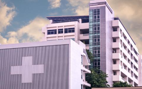 Large Hospital Groups